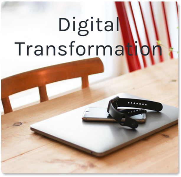 Digital Transformation with Dr Mukhtar Lasisi and Laura DiBenedetto